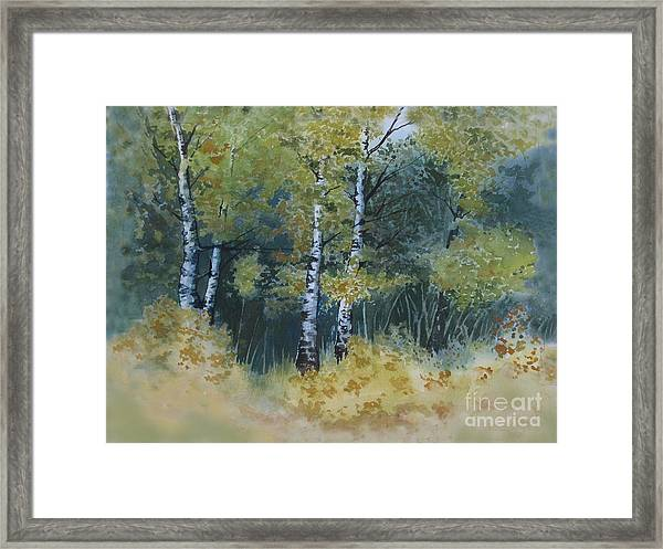 Surrounded By Greenery Framed Print