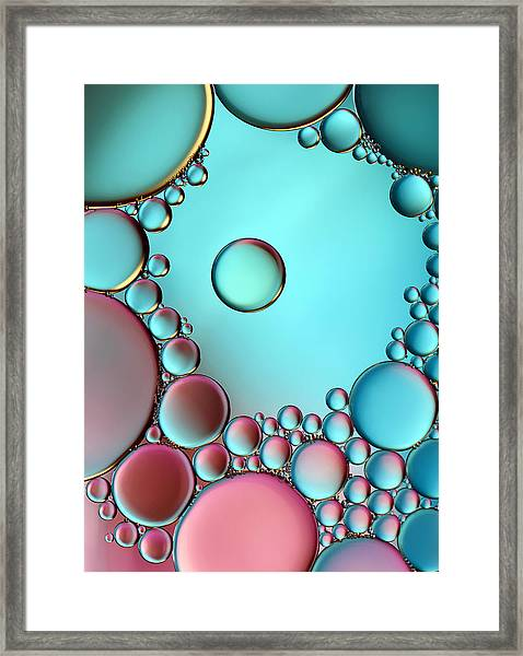 Surrounded Or Protected ? Framed Print