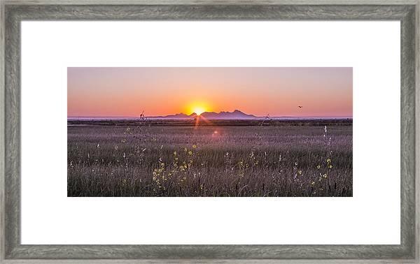 Sutter Buttes Framed Print