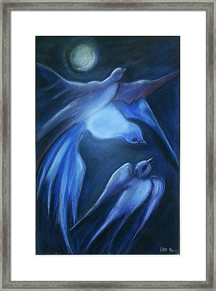 Swallows Framed Print