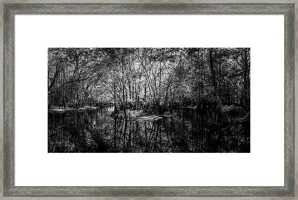 Swamp Island Framed Print