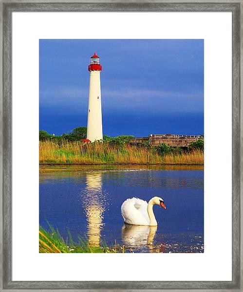 Swan At The Lighthouse Framed Print