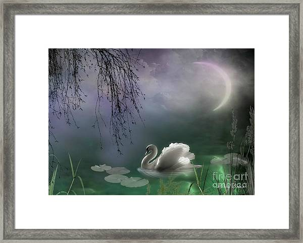 Swan By Moonlight Framed Print