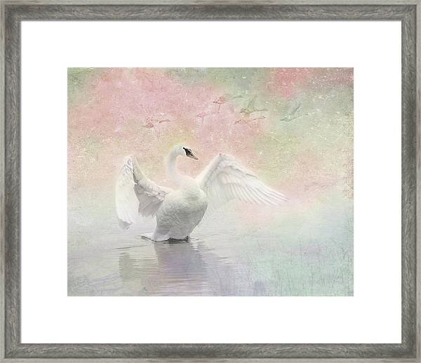 Framed Print featuring the photograph Swan Dream - Display Spring Pastel Colors by Patti Deters