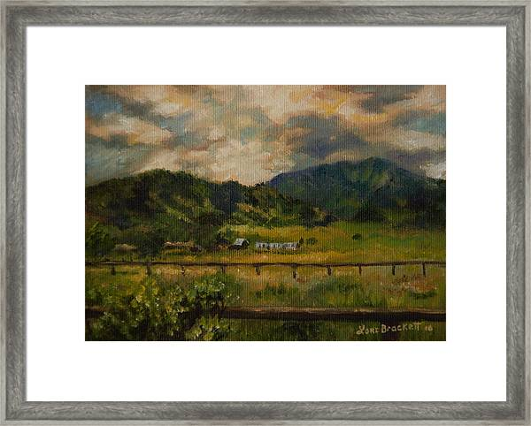 Swan Valley Hillside Framed Print