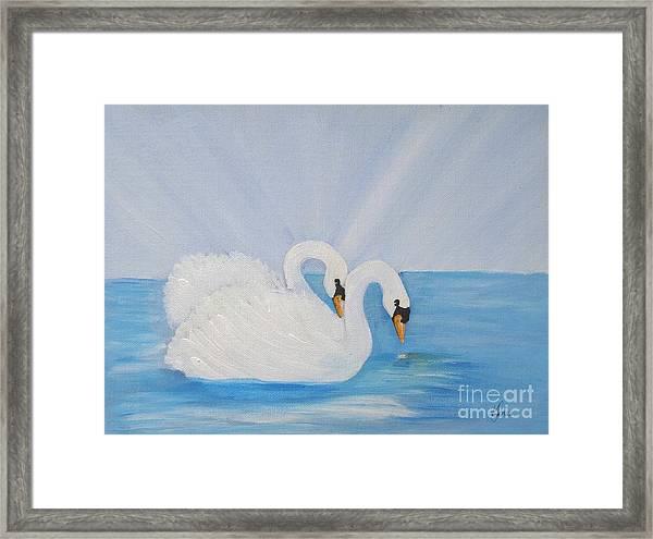 Swans On Open Water Framed Print
