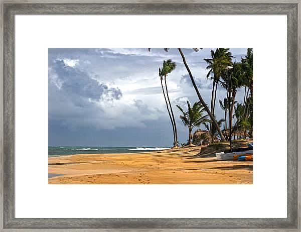 Sway Framed Print