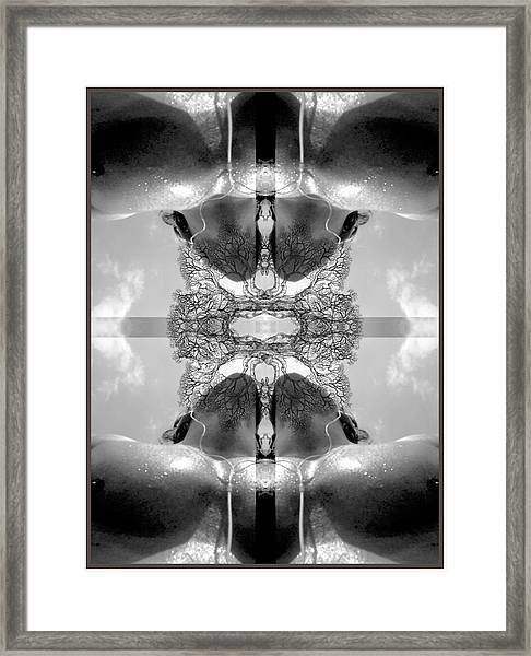 Sweat Framed Print