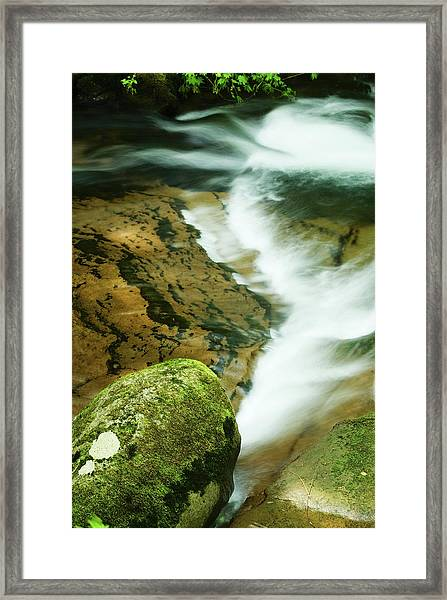 Sweet Creek Framed Print