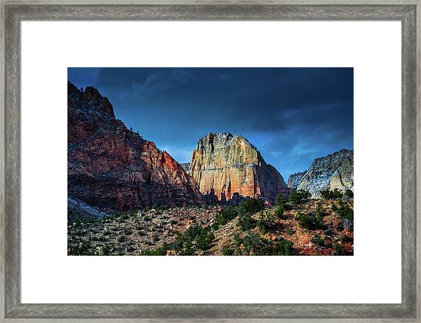 Sweet Light Framed Print