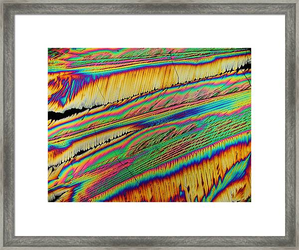 Sweet Vibrations Framed Print