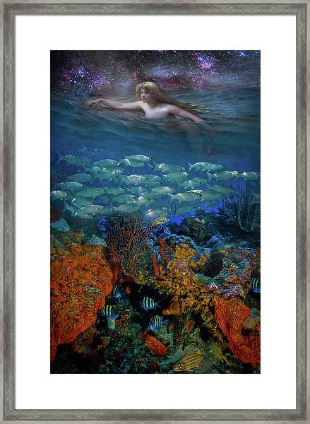 Swimming Under The Stars Framed Print
