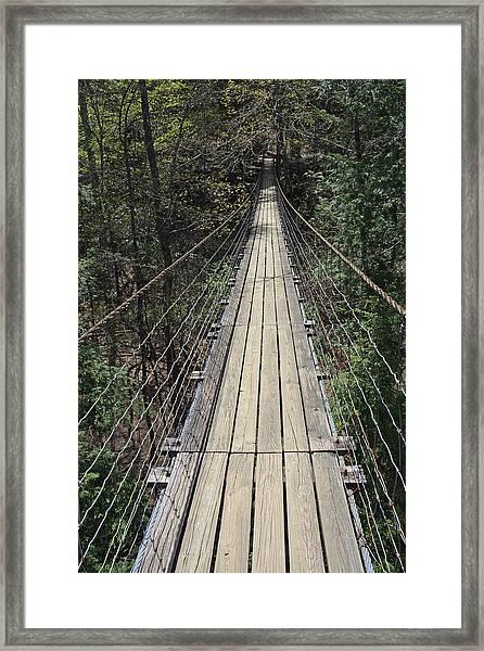 Swinging Bridge Falls Creek Falls State Park Framed Print