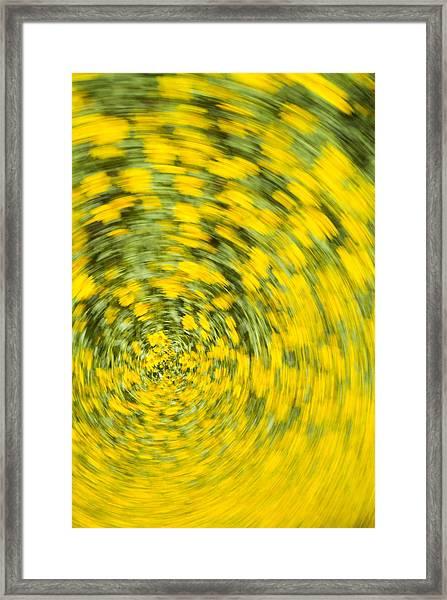 Swirling Flowers Framed Print