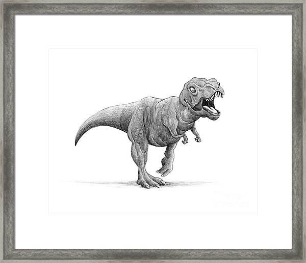 T-rex Framed Print