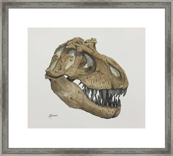 T. Rex Skull 2 Framed Print