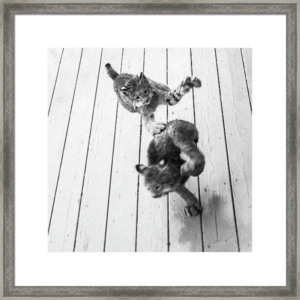 Tag Youre It Framed Print