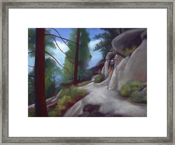 Tahoe Flume Trail Framed Print