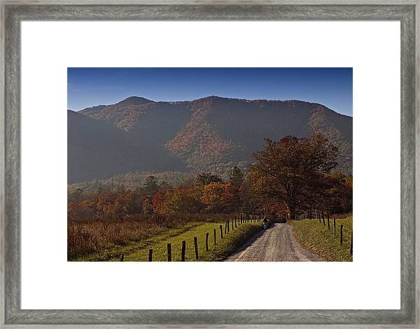 Taking A Walk Down Sparks Lane Framed Print