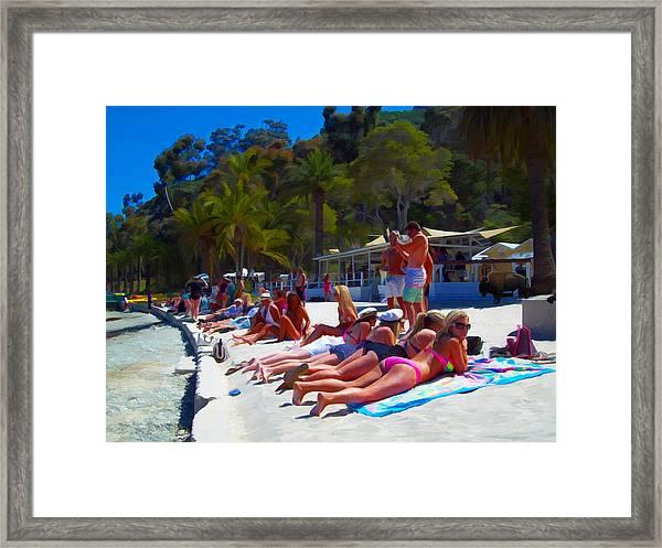 Taking In The Sun Framed Print