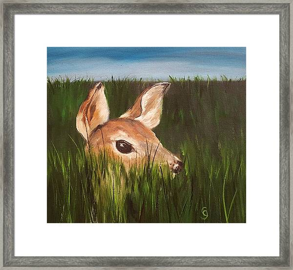 Tall Grass    #63 Framed Print