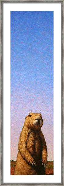 Tall Prairie Dog Framed Print