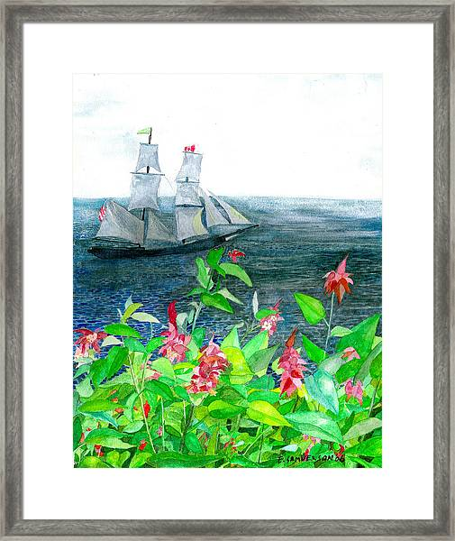 Tall Ships In Victoria Bc Framed Print