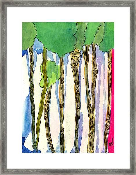 Tall Trees Framed Print
