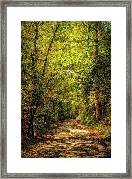 Tallulah Trail Framed Print