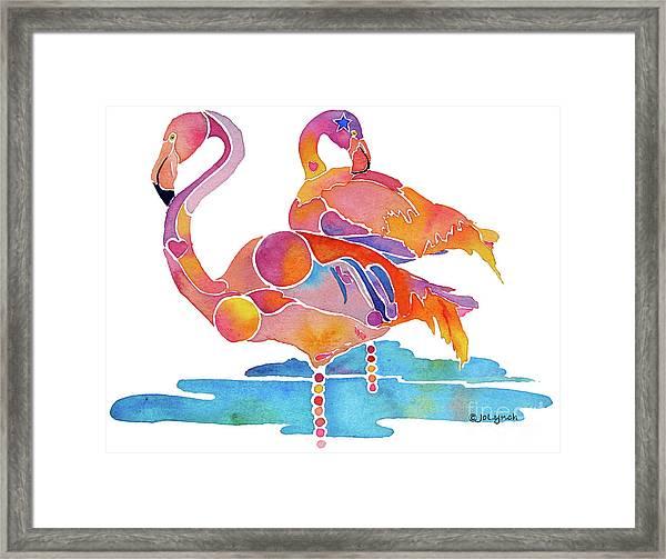 Tampa Nic Flamingos Framed Print