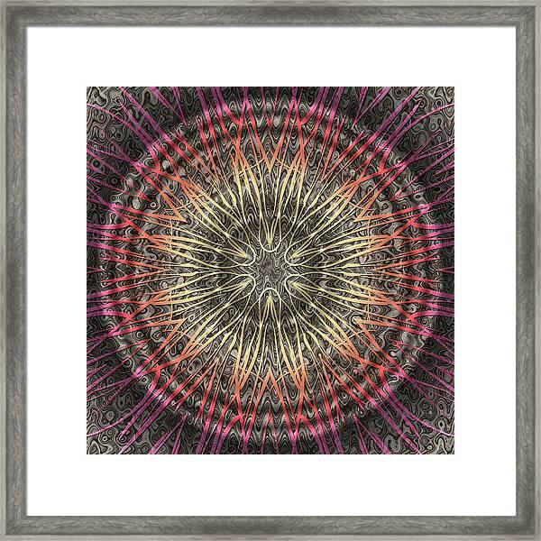 Tangendental Meditation Framed Print