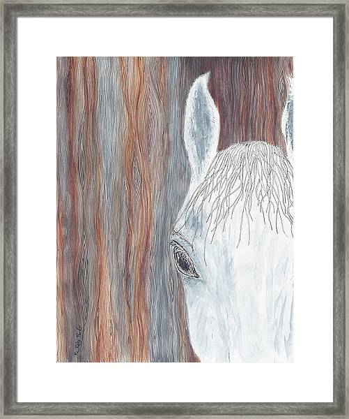 Tanglewood Framed Print