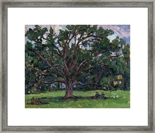 Tanglewood Tree Framed Print