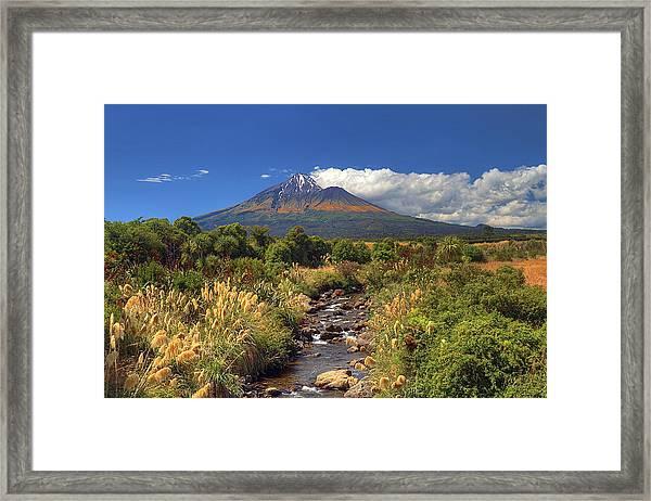 Taranaki Gold Framed Print