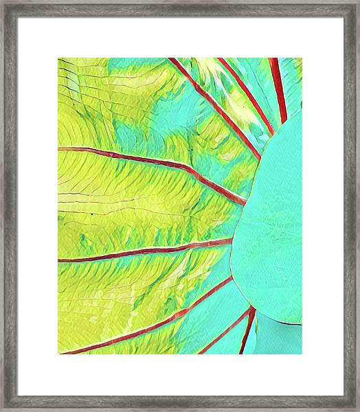 Taro Leaf In Turquoise - The Other Side Framed Print