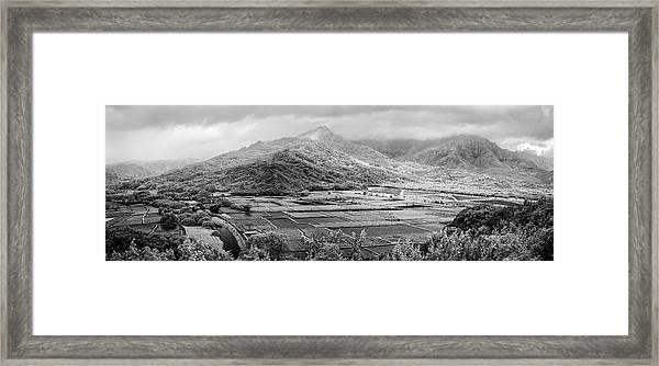 Taro  Terrain Framed Print