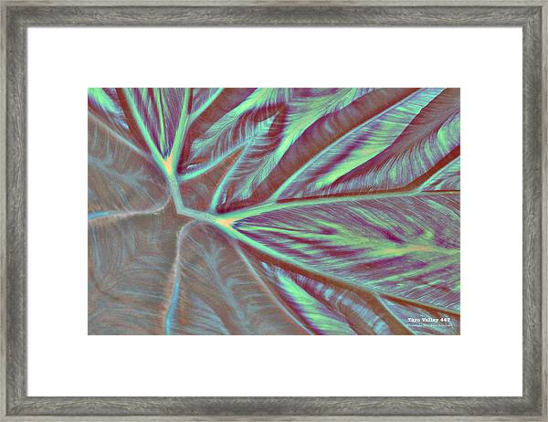 Framed Print featuring the digital art Taro Valley 447 by Brian Gryphon