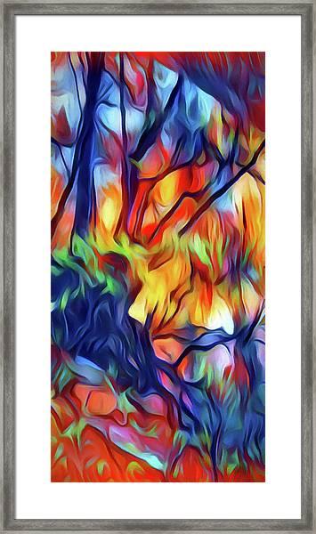 Taylors Creek Framed Print