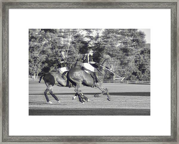 Team Polo Framed Print