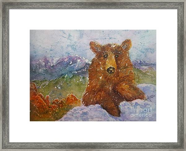 Teddy Wakes Up In The Most Desireable City In The Nation Framed Print