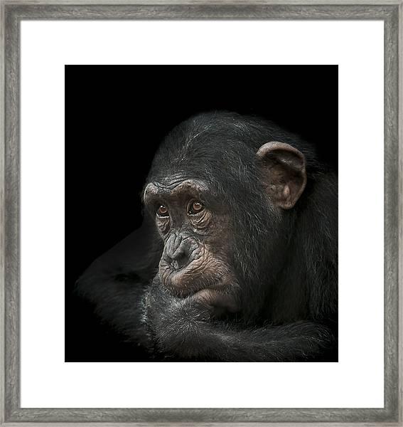 Tedium Framed Print
