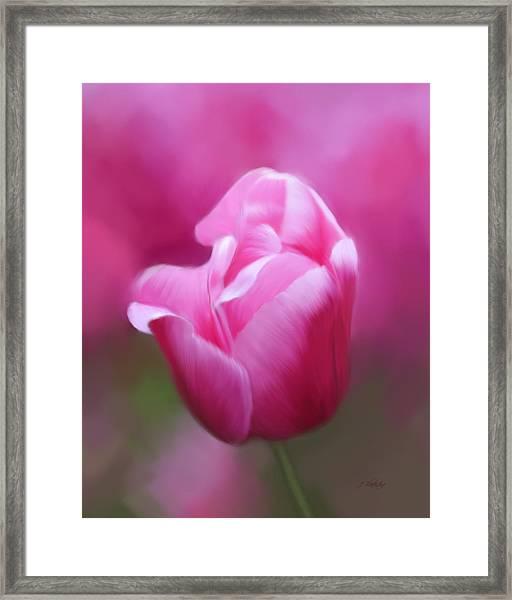Tell Your Heart To Beat Again - Flower Art Framed Print