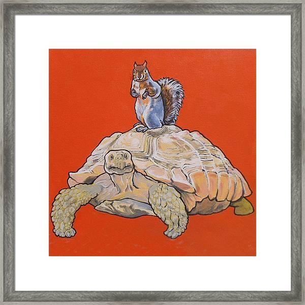 Terwilliger The Turtle Framed Print
