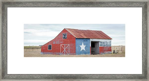 Texas Barn With Goats And Ram On The Side Framed Print