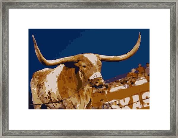 Texas Bevo Color 16 Framed Print