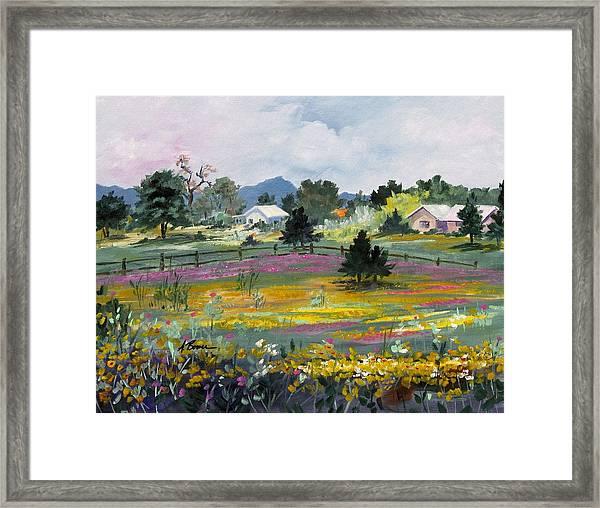 Texas Hillcountry Flowers Framed Print