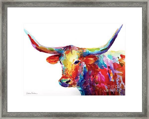 Texas Longhorn Art Framed Print