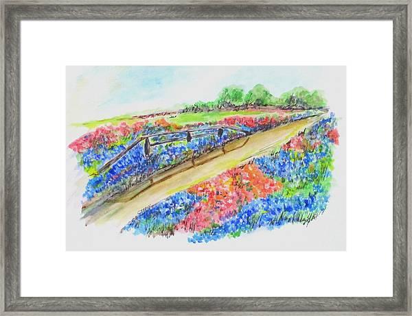 Texas Wild Flowers Framed Print