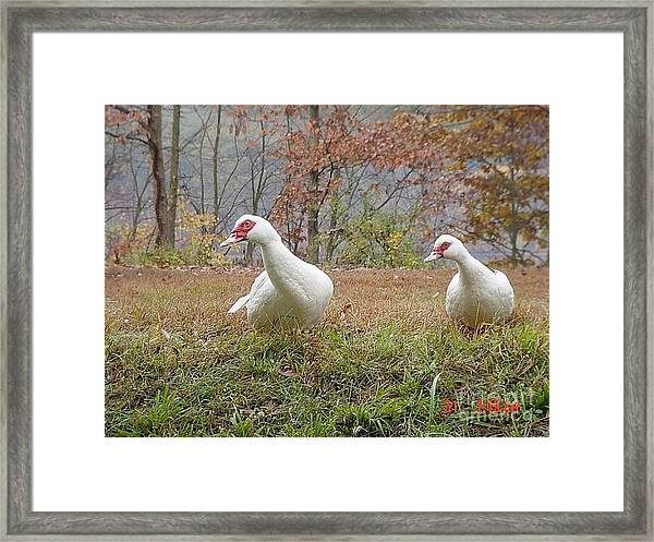 That A Way Framed Print