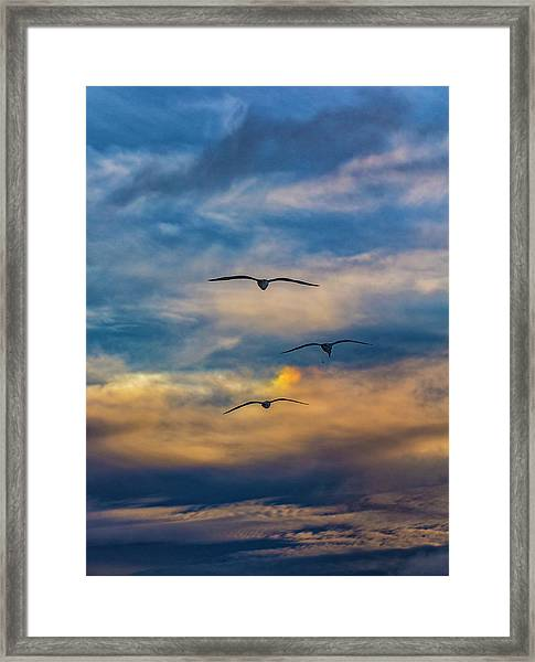 The 3 Framed Print